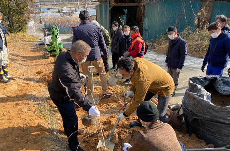 松の植樹の様子1